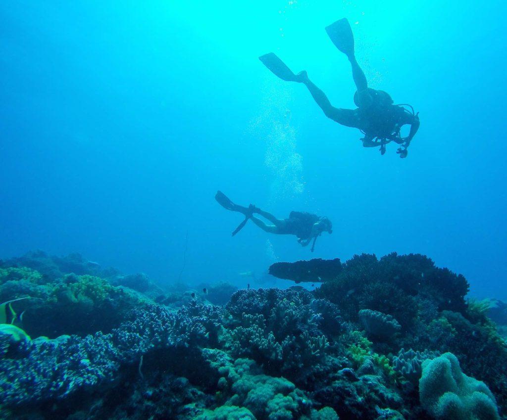 Dykning-Zanzibar