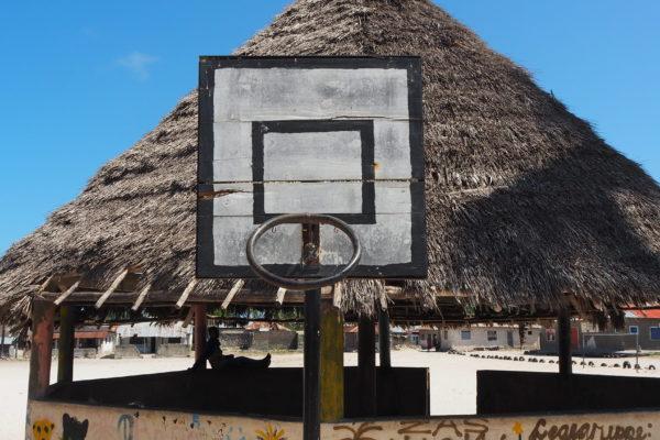 Sådan ser basketnettene ud
